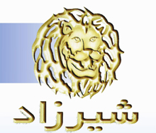shirzad logo